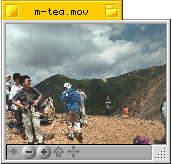m-tea.jpg