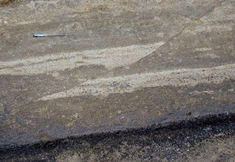 逆断層 こちらは露頭サイズの断層です.横方向からの圧縮による低角の逆断層です.... 逆断層